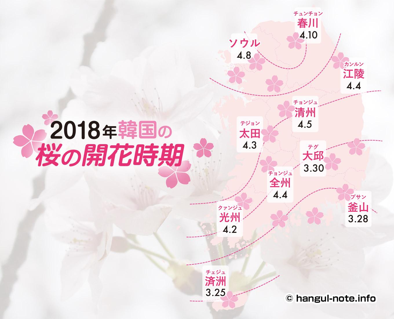 パソコンで2018年韓国の桜開花・桜まつりの情報をチェック!