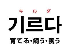 韓国語の「기르다 キルダ(育てる・飼う・養う)」を覚える!