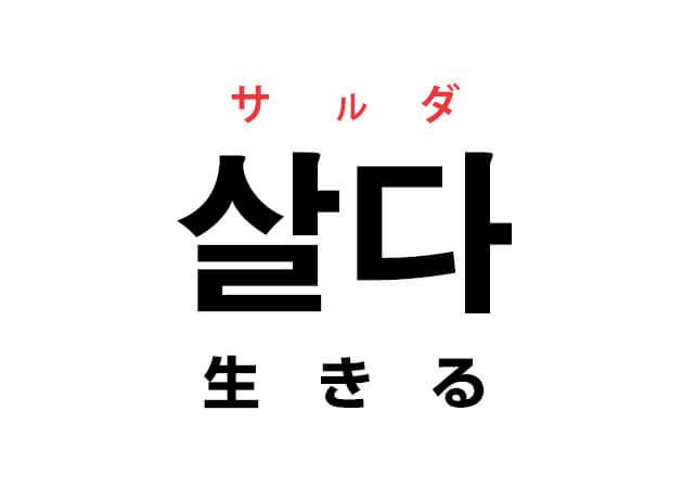 살다 サルダ 生きる 韓国語 単語