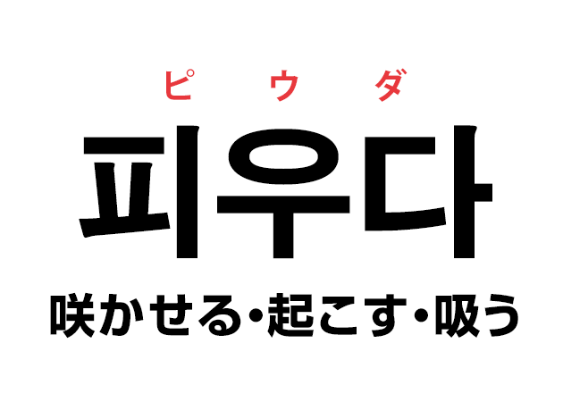 韓国語の「피우다 ピウダ(咲かせる・起こす・吸う)」を覚える!