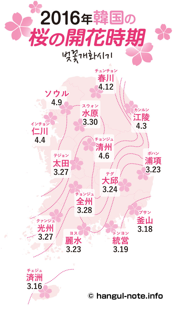 スマホで2016年韓国の桜開花・桜まつりの情報をチェック!