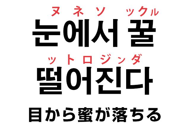 韓国語で好きな人を見つめる表現「눈에서 꿀 떨어진다 (目から蜜が落ちる)」