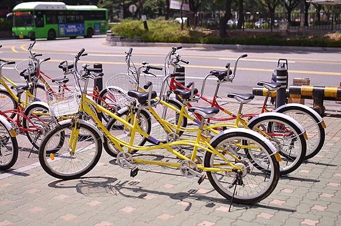 そこで今回は二人乗り自転車を乗って楽しんできました〜♪