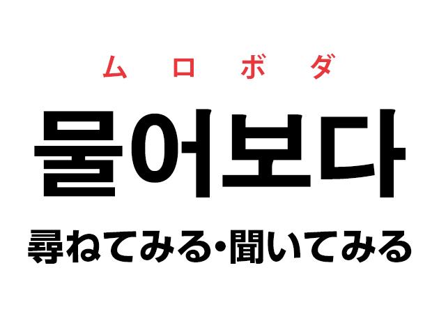 韓国語の「물어보다 ムロボダ(尋ねてみる・聞いてみる)」を覚える!